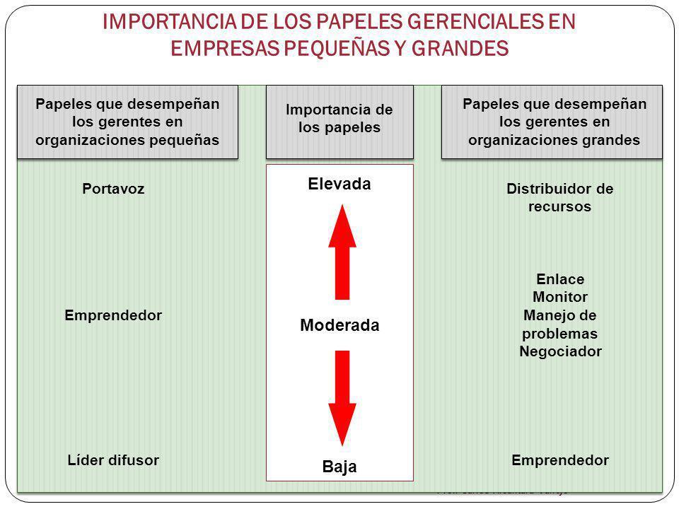 IMPORTANCIA DE LOS PAPELES GERENCIALES EN EMPRESAS PEQUEÑAS Y GRANDES