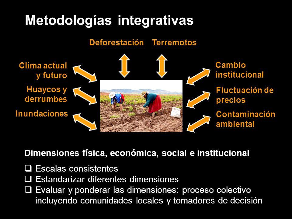 Metodologías integrativas