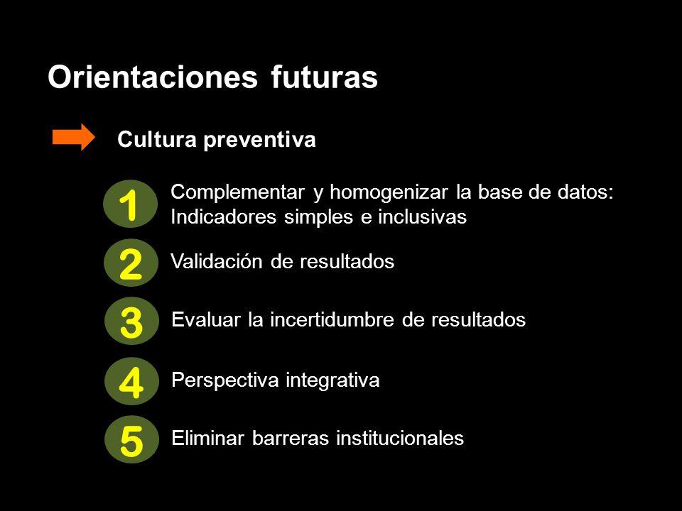 Orientaciones futuras