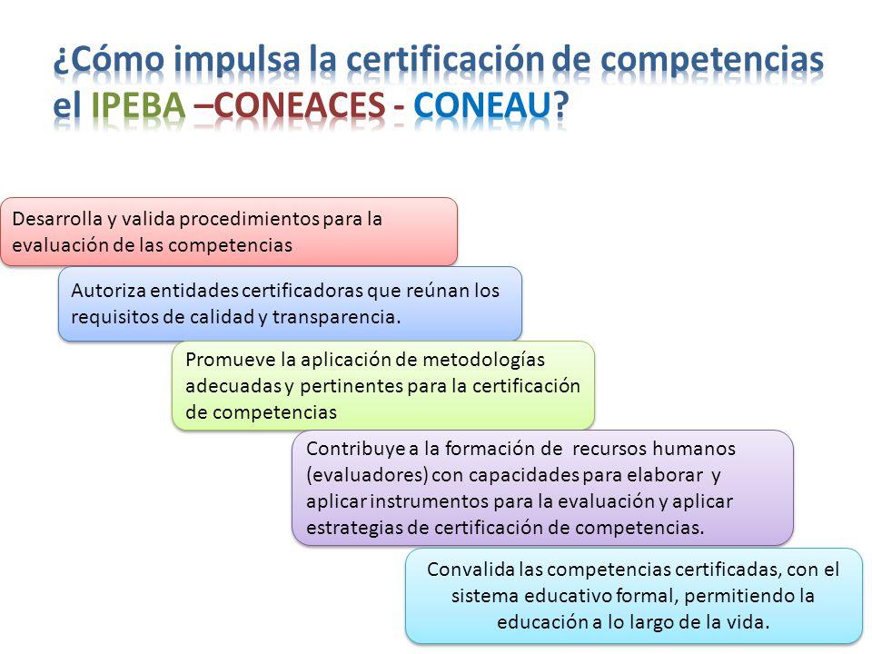 ¿Cómo impulsa la certificación de competencias el IPEBA –CONEACES - CONEAU