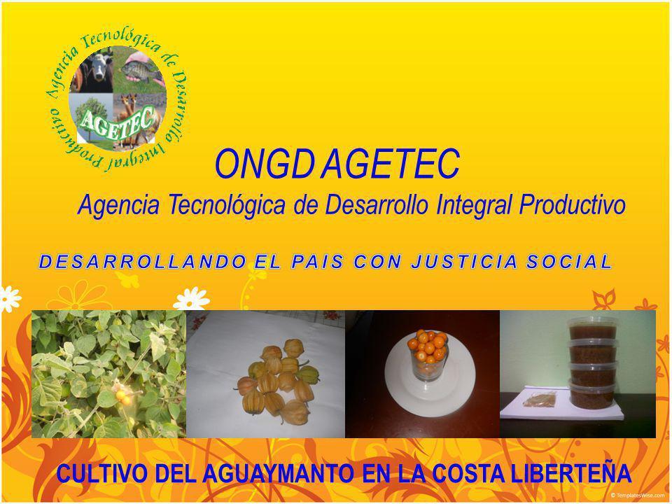 Agencia Tecnológica de Desarrollo Integral Productivo