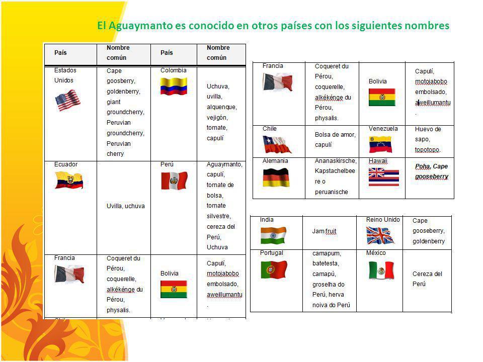 El Aguaymanto es conocido en otros países con los siguientes nombres