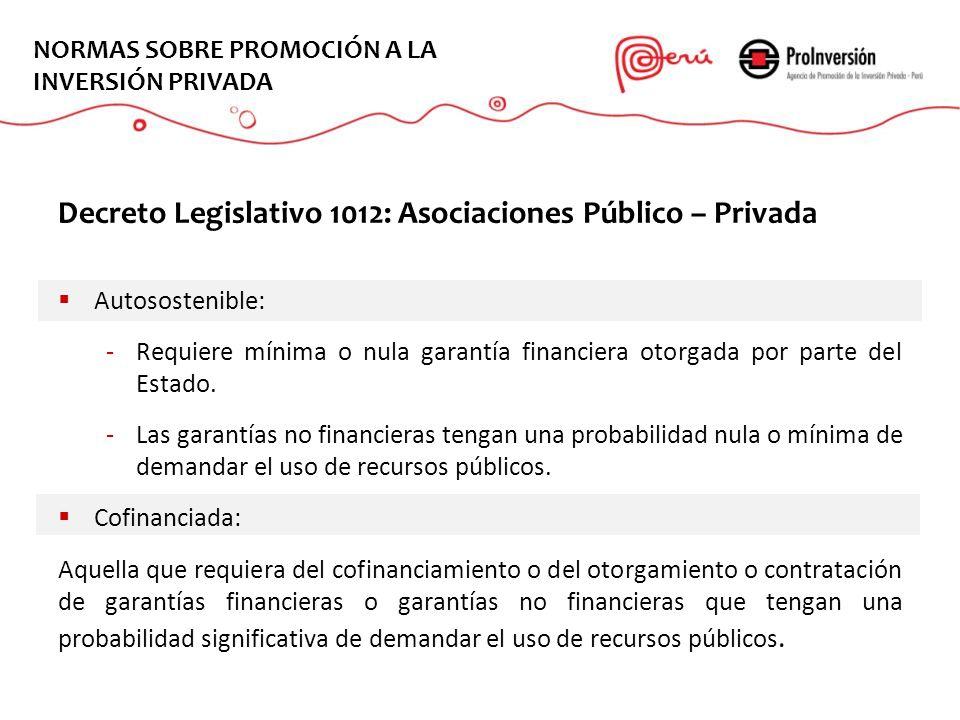 EL PROYECTO NORMAS SOBRE PROMOCIÓN A LA INVERSIÓN PRIVADA