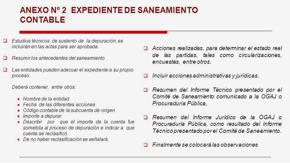 ANEXO Nº 2 EXPEDIENTE DE SANEAMIENTO CONTABLE