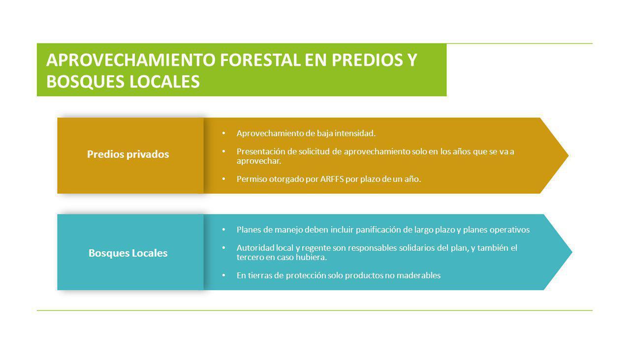 APROVECHAMIENTO FORESTAL EN PREDIOS Y BOSQUES LOCALES