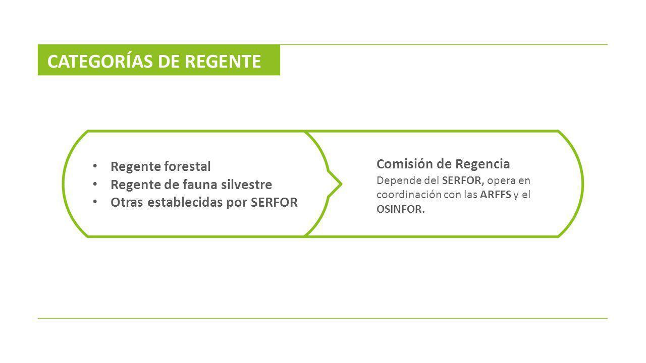 CATEGORÍAS DE REGENTE Comisión de Regencia Regente forestal