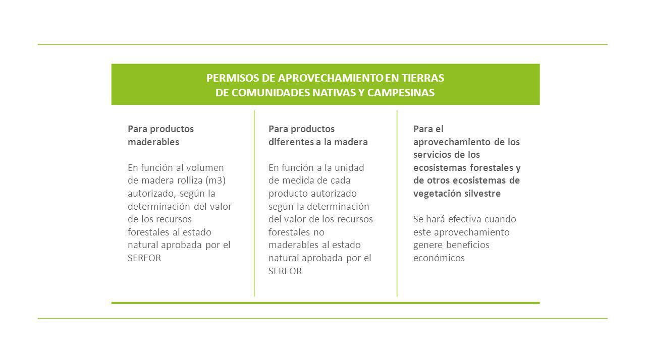 PERMISOS DE APROVECHAMIENTO EN TIERRAS