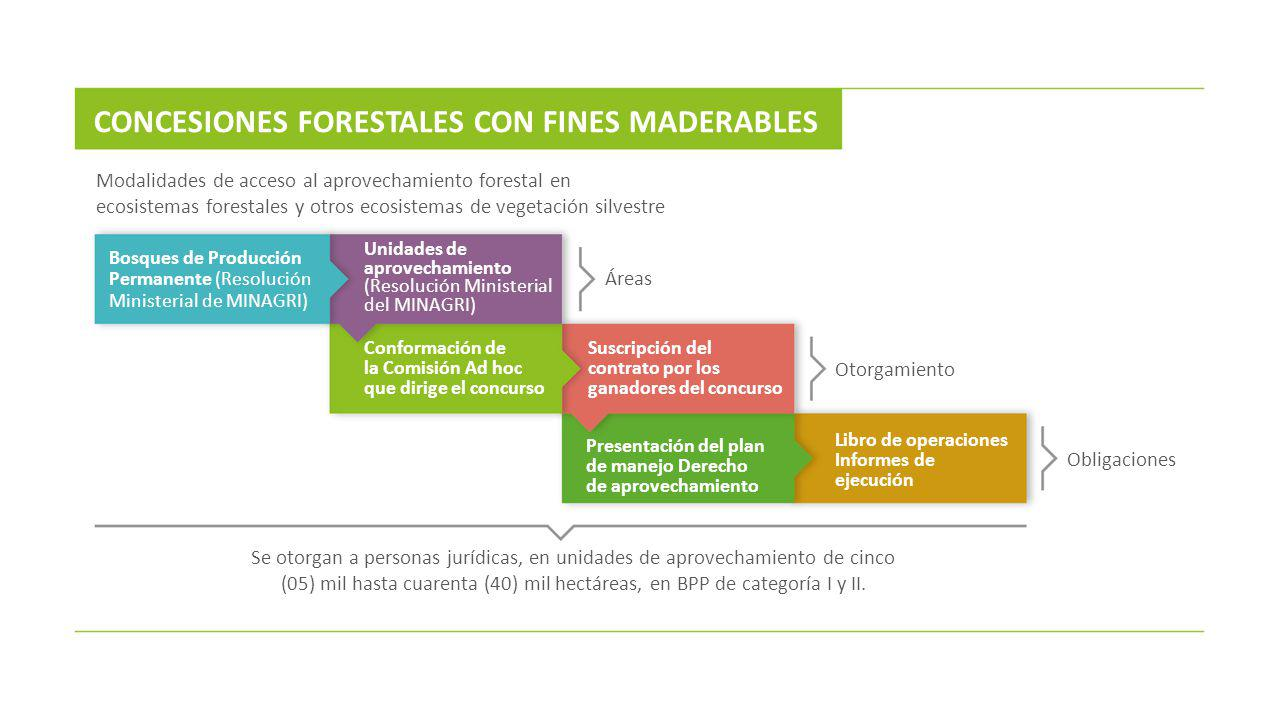 CONCESIONES FORESTALES CON FINES MADERABLES
