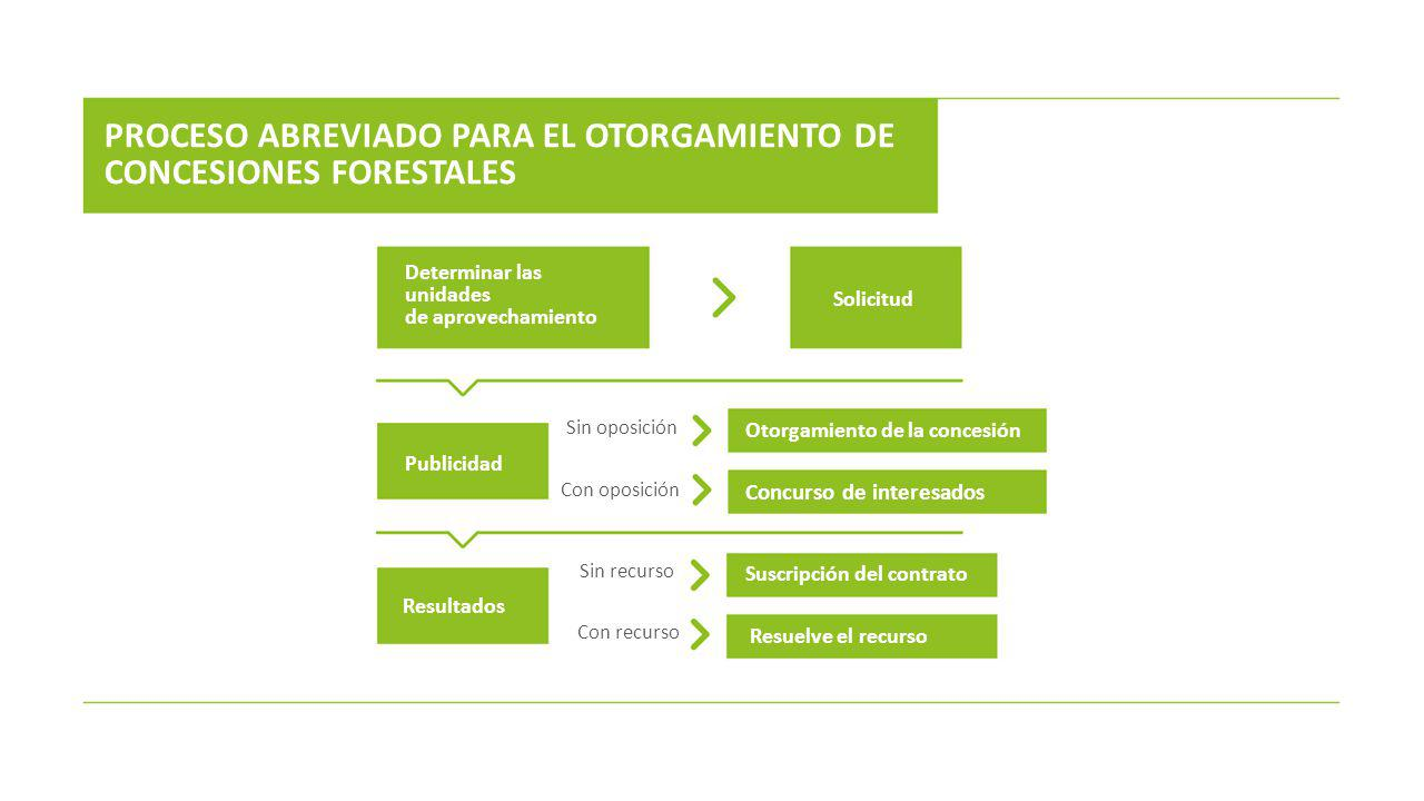 PROCESO ABREVIADO PARA EL OTORGAMIENTO DE CONCESIONES FORESTALES
