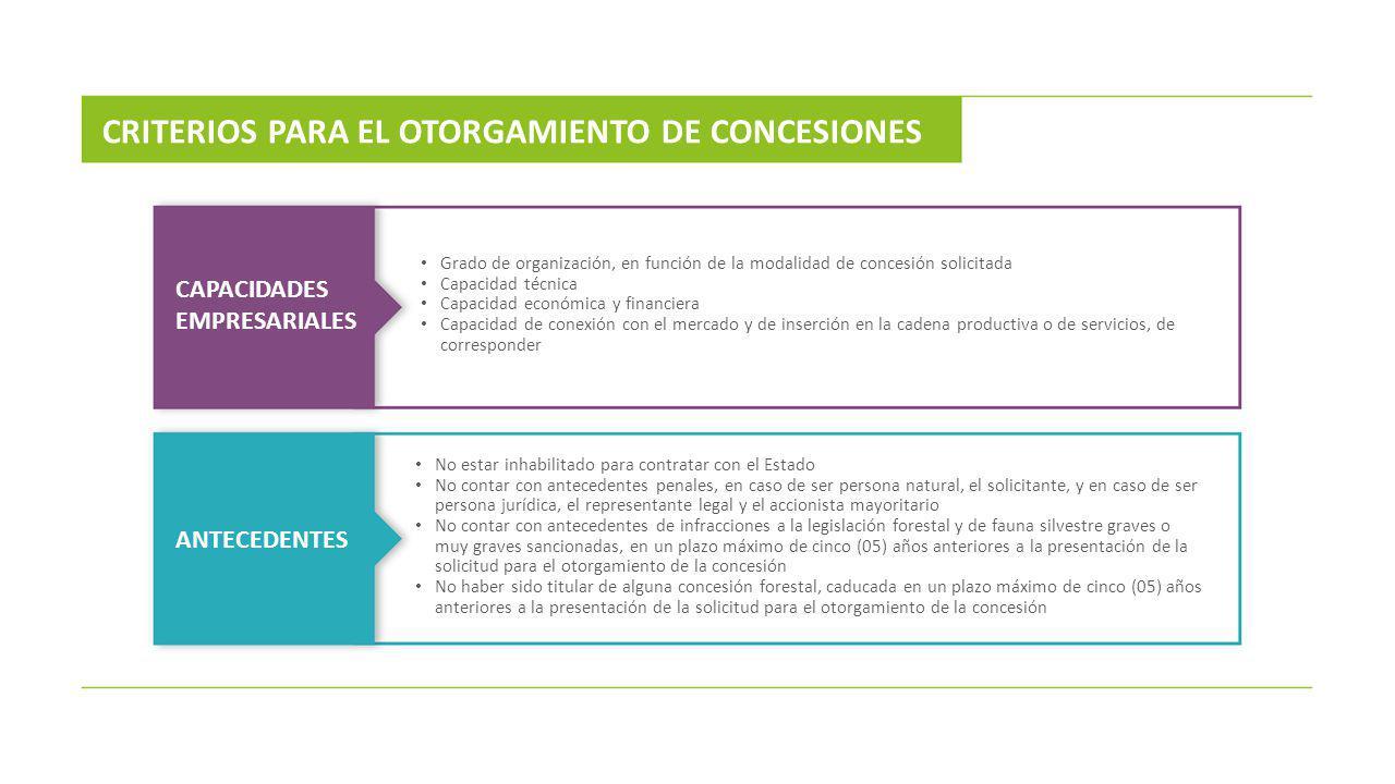 CRITERIOS PARA EL OTORGAMIENTO DE CONCESIONES