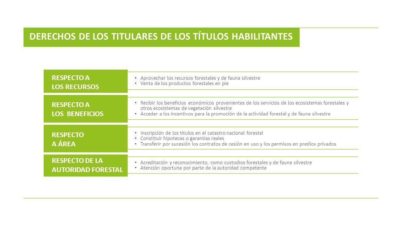 DERECHOS DE LOS TITULARES DE LOS TÍTULOS HABILITANTES
