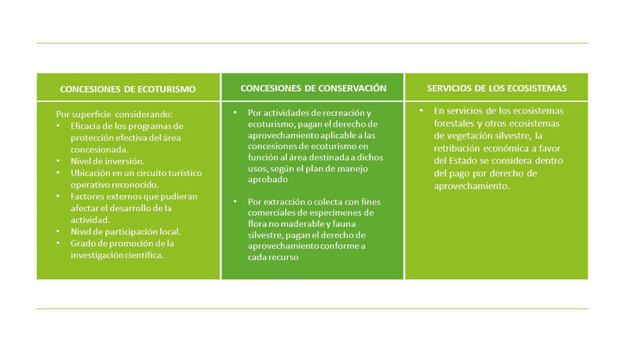 CONCESIONES DE ECOTURISMO CONCESIONES DE CONSERVACIÓN