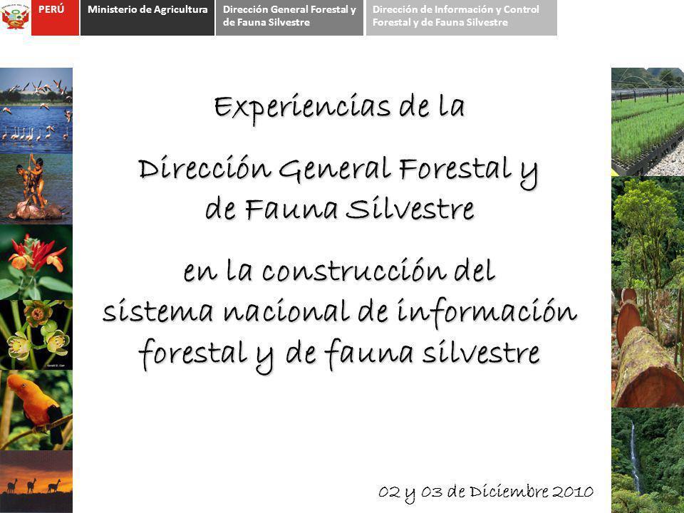Dirección General Forestal y de Fauna Silvestre