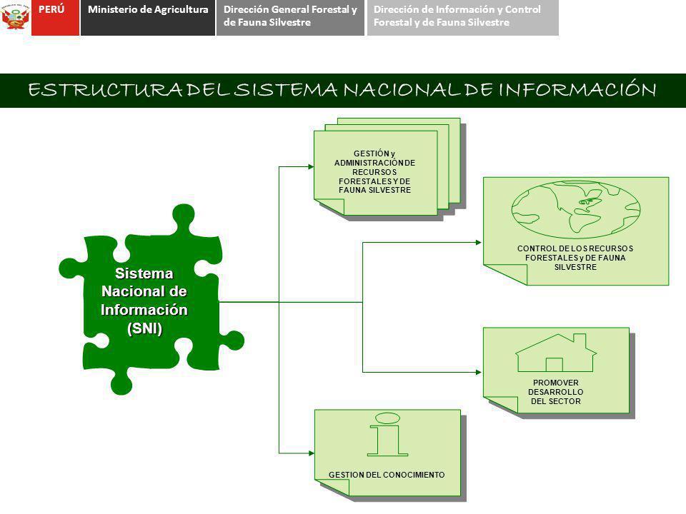 ESTRUCTURA DEL SISTEMA NACIONAL DE INFORMACIÓN