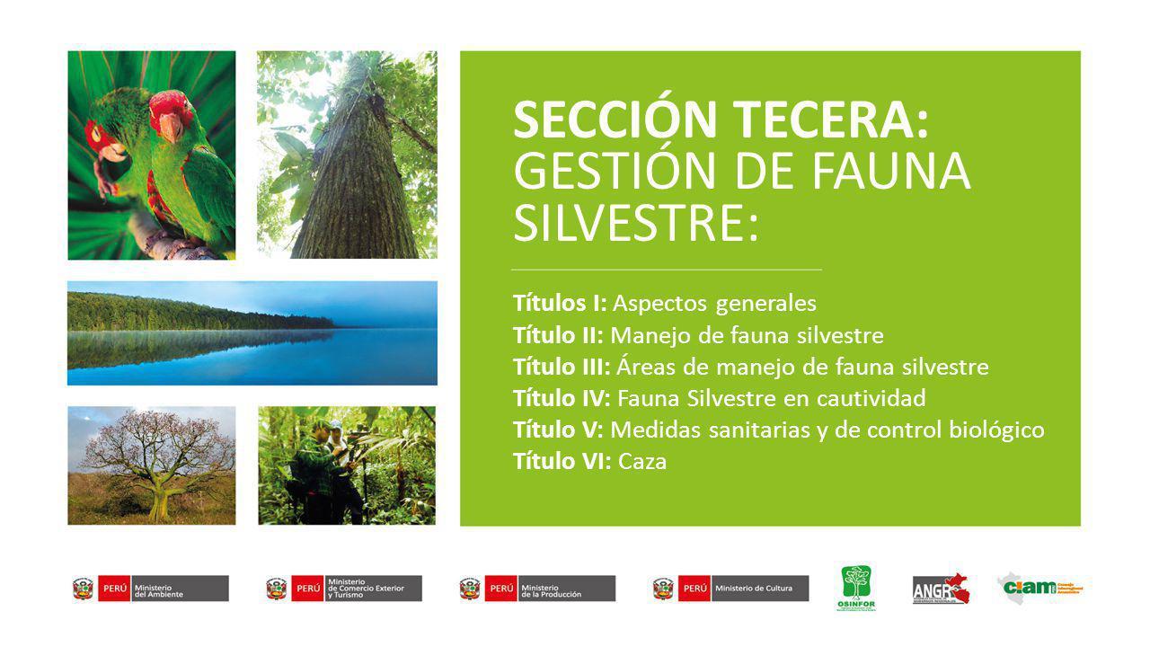 SECCIÓN TECERA: GESTIÓN DE FAUNA SILVESTRE: