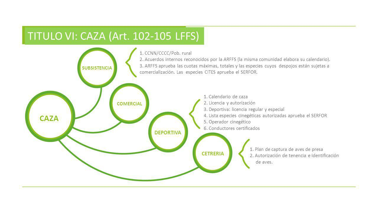 TITULO VI: CAZA (Art. 102-105 LFFS)