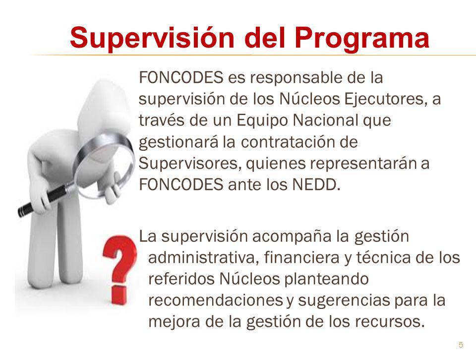 Supervisión del Programa