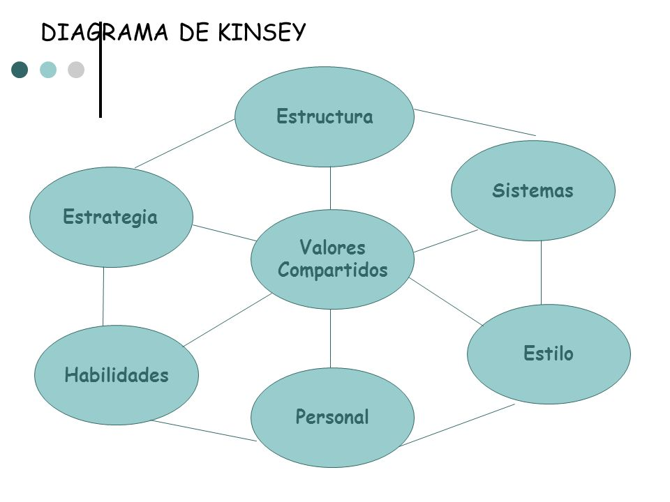 DIAGRAMA DE KINSEY Estructura Sistemas Estrategia Valores Compartidos