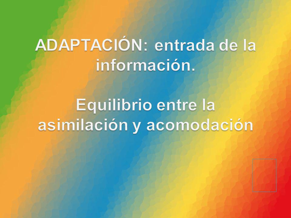ADAPTACIÓN: entrada de la información