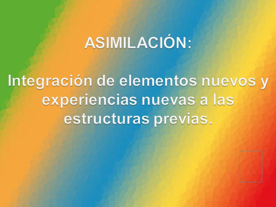ASIMILACIÓN: Integración de elementos nuevos y experiencias nuevas a las estructuras previas.