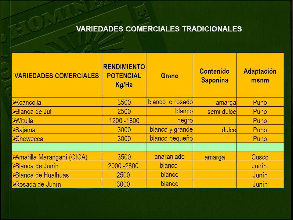 VARIEDADES COMERCIALES RENDIMIENTO POTENCIAL Kg/Ha