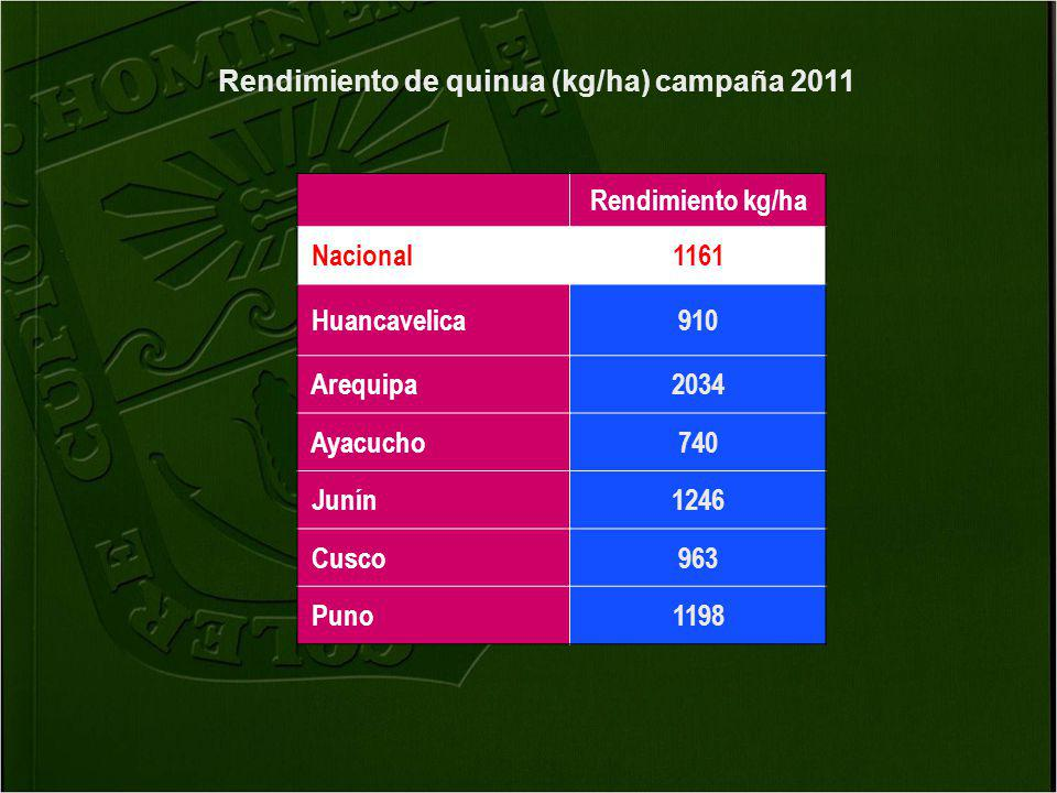 Rendimiento de quinua (kg/ha) campaña 2011