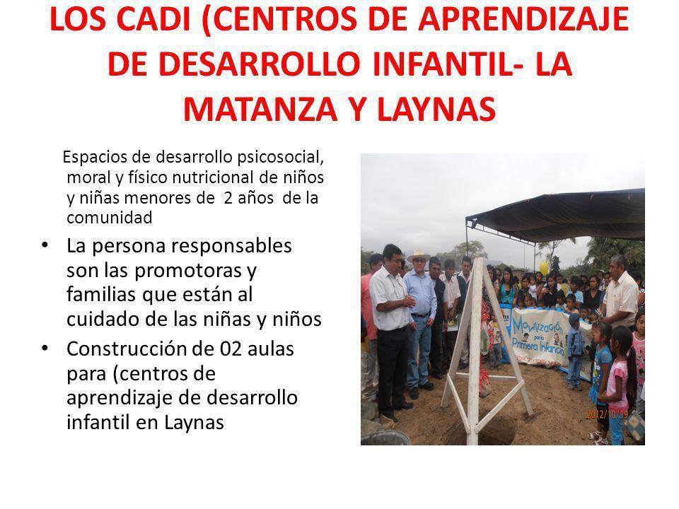 LOS CADI (CENTROS DE APRENDIZAJE DE DESARROLLO INFANTIL- LA MATANZA Y LAYNAS