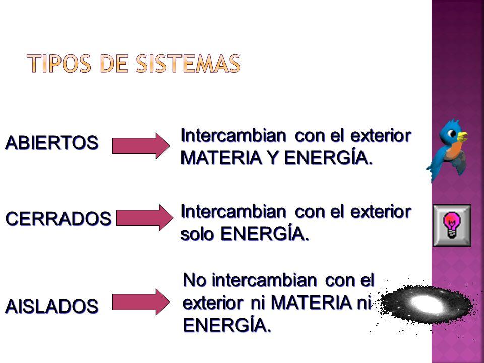 TIPOS DE SISTEMAS Intercambian con el exterior MATERIA Y ENERGÍA.