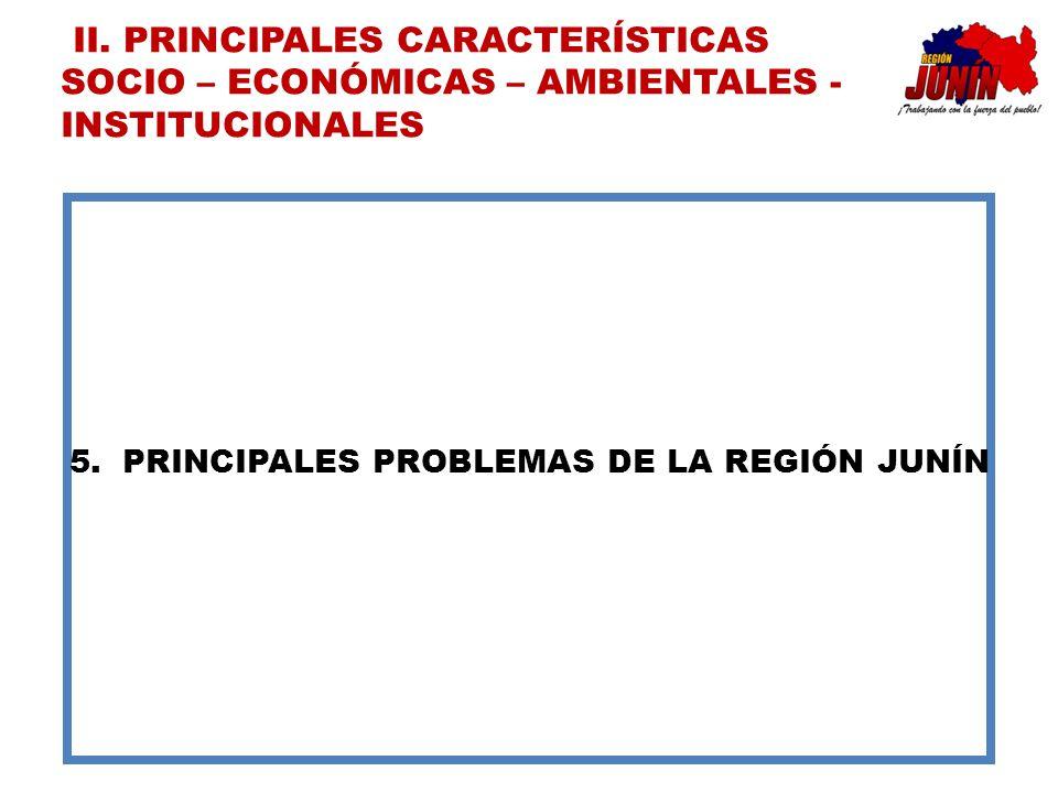 PRINCIPALES PROBLEMAS DE LA REGIÓN JUNÍN