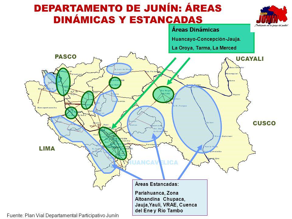 DEPARTAMENTO DE JUNÍN: ÁREAS DINÁMICAS Y ESTANCADAS