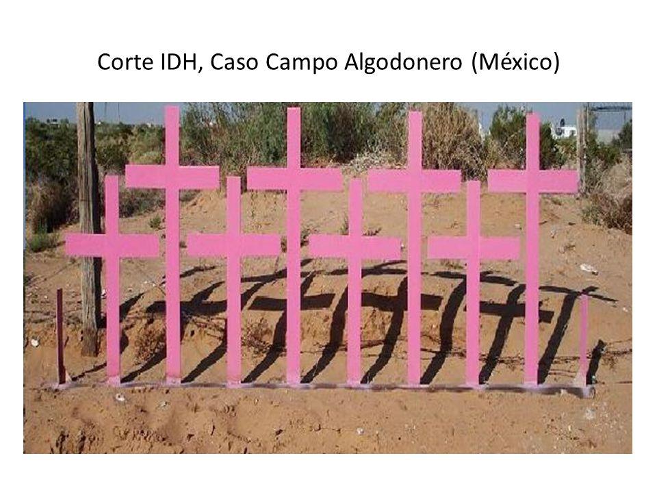 Corte IDH, Caso Campo Algodonero (México)