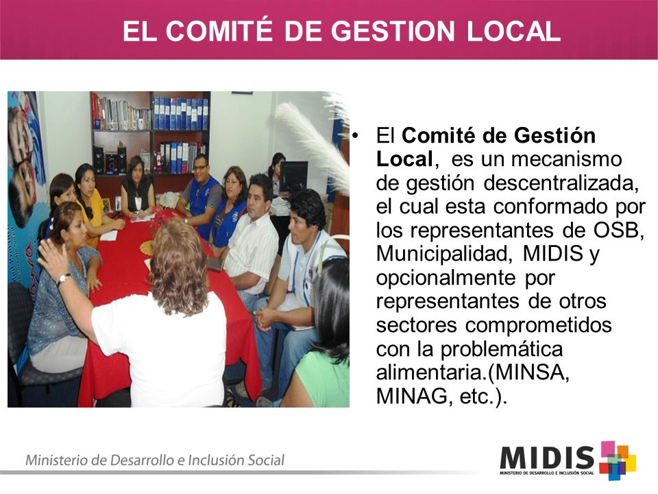 EL COMITÉ DE GESTION LOCAL