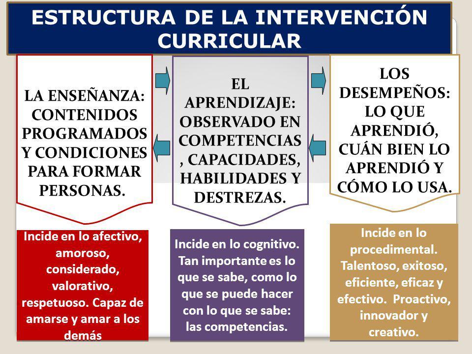 ESTRUCTURA DE LA INTERVENCIÓN CURRICULAR