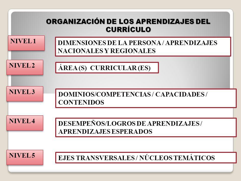 ORGANIZACIÓN DE LOS APRENDIZAJES DEL CURRÍCULO