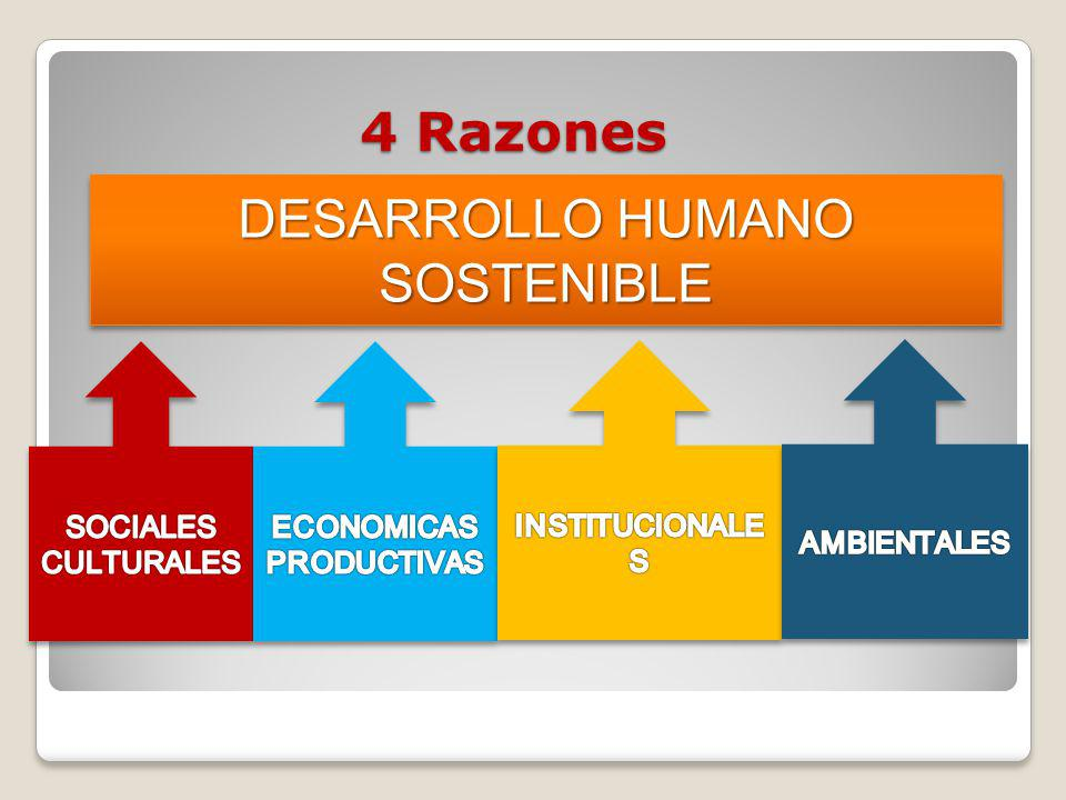 ECONOMICAS PRODUCTIVAS
