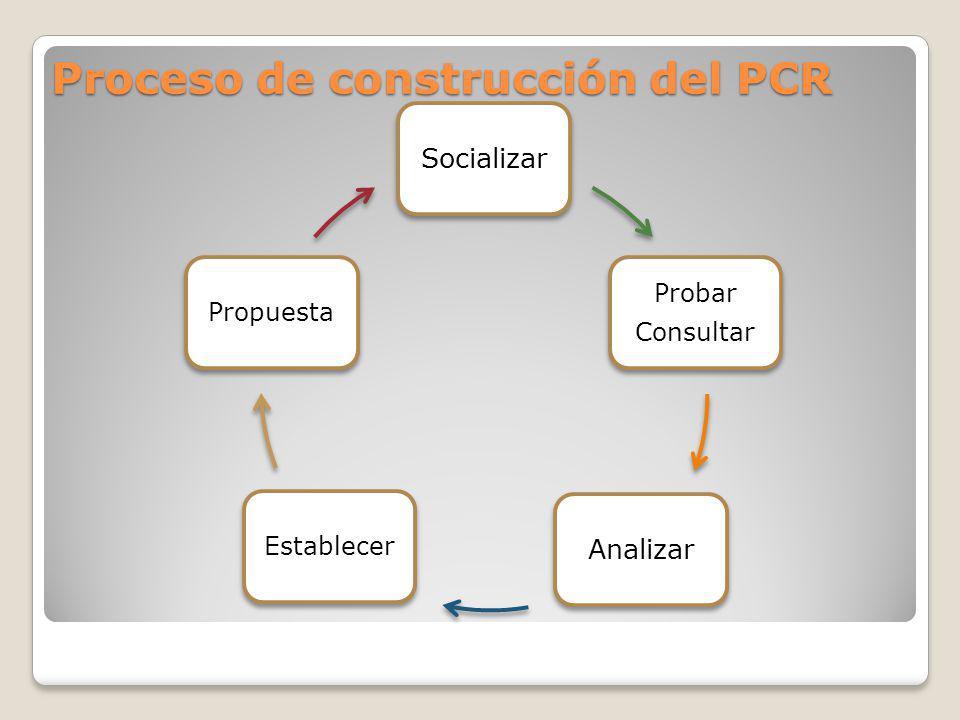 Proceso de construcción del PCR