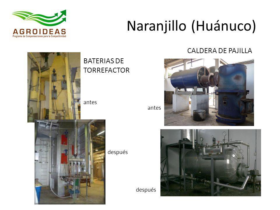 Naranjillo (Huánuco) CALDERA DE PAJILLA BATERIAS DE TORREFACTOR antes