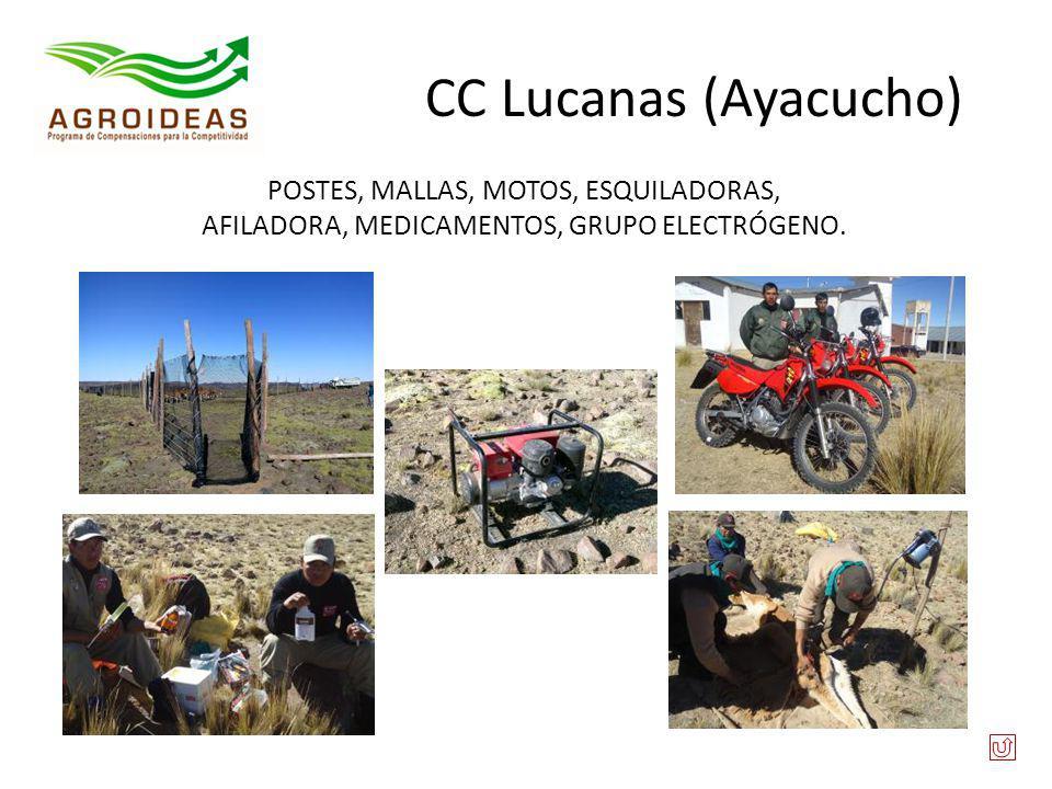 CC Lucanas (Ayacucho) POSTES, MALLAS, MOTOS, ESQUILADORAS, AFILADORA, MEDICAMENTOS, GRUPO ELECTRÓGENO.