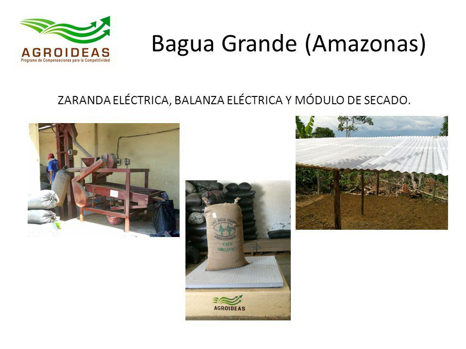 Bagua Grande (Amazonas)