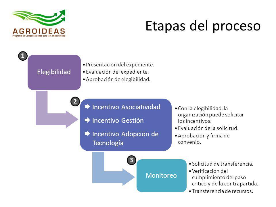 Etapas del proceso Elegibilidad  Incentivo Asociatividad
