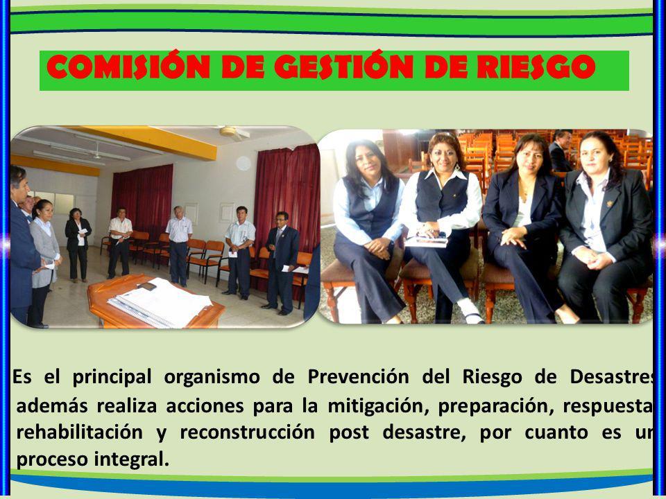 COMISIÓN DE GESTIÓN DE RIESGO