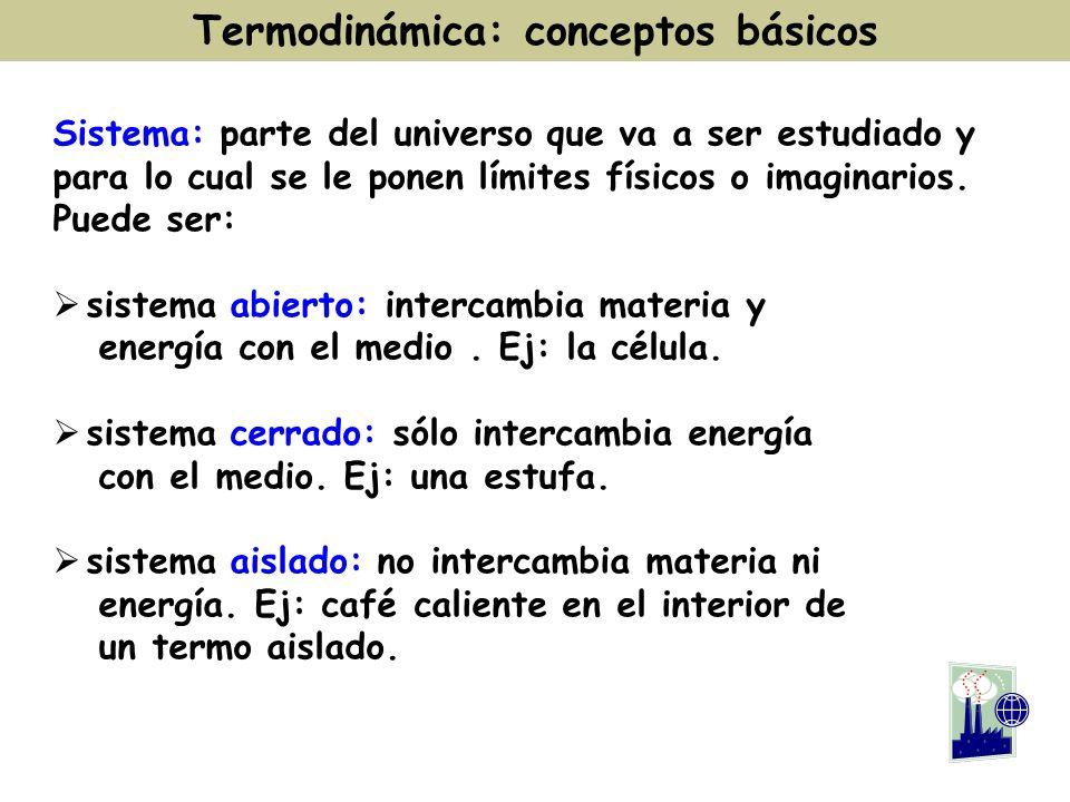 Termodinámica: conceptos básicos