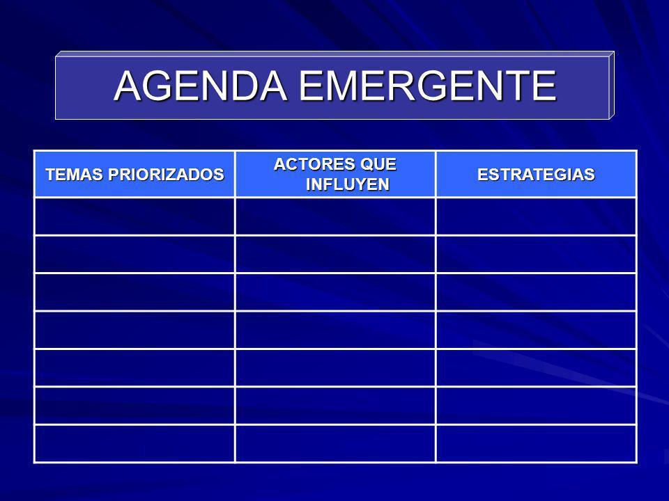 AGENDA EMERGENTE TEMAS PRIORIZADOS ACTORES QUE INFLUYEN ESTRATEGIAS