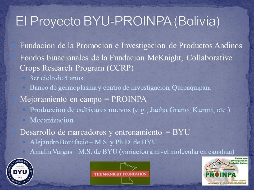 El Proyecto BYU-PROINPA (Bolivia)
