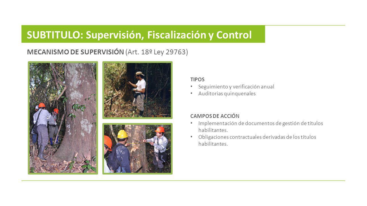 SUBTITULO: Supervisión, Fiscalización y Control