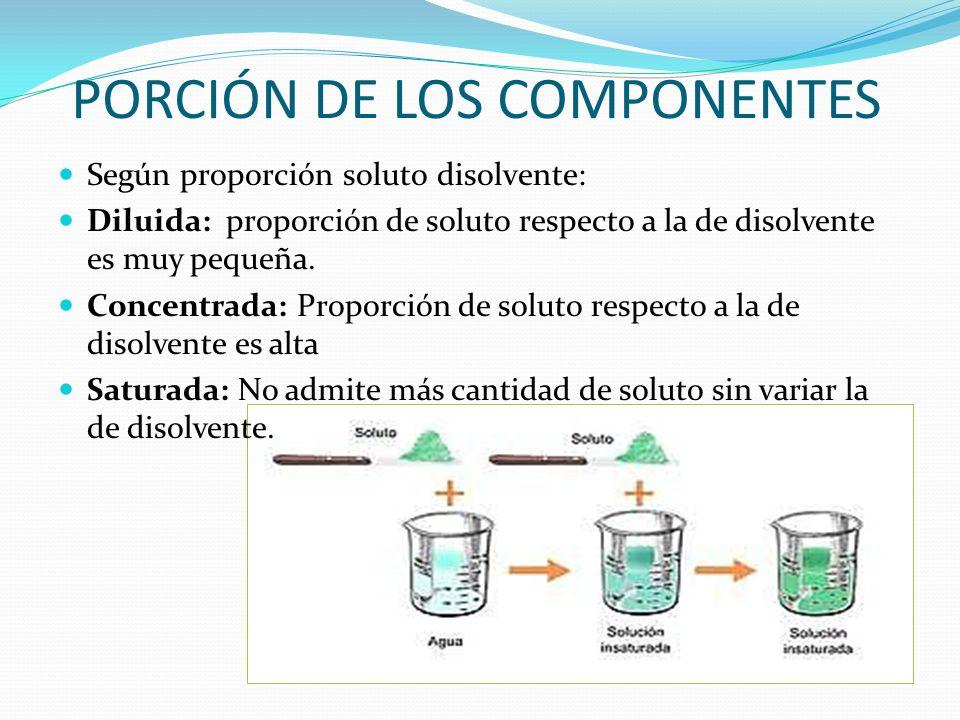 PORCIÓN DE LOS COMPONENTES