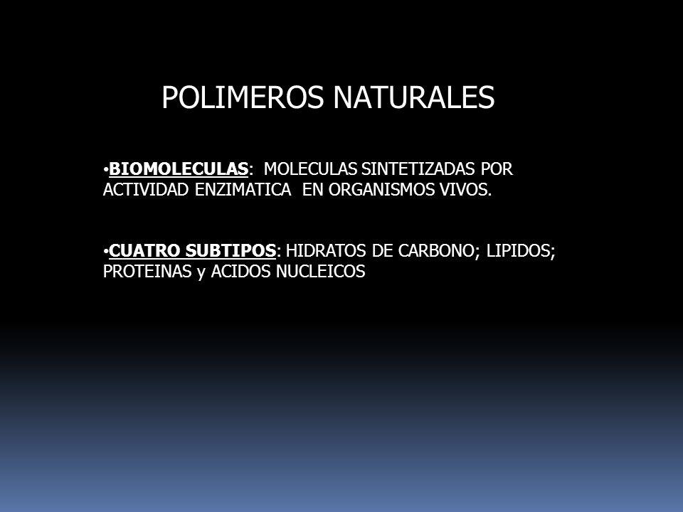 POLIMEROS NATURALES BIOMOLECULAS: MOLECULAS SINTETIZADAS POR ACTIVIDAD ENZIMATICA EN ORGANISMOS VIVOS.