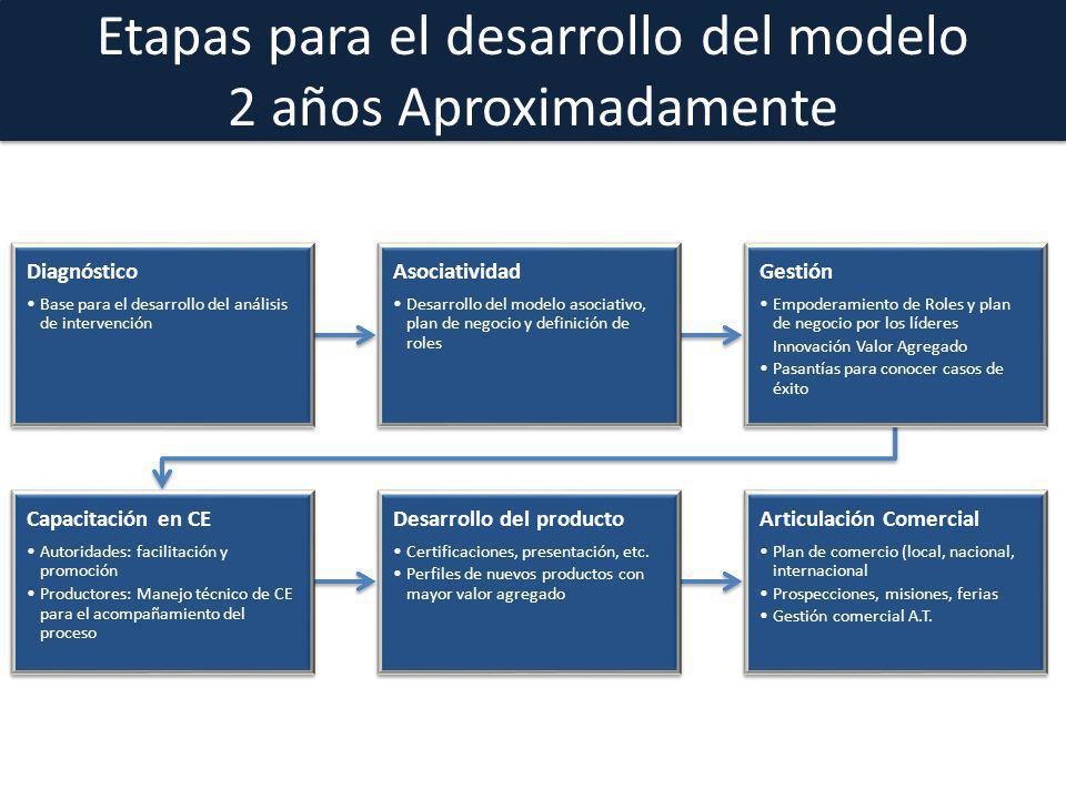 Etapas para el desarrollo del modelo 2 años Aproximadamente
