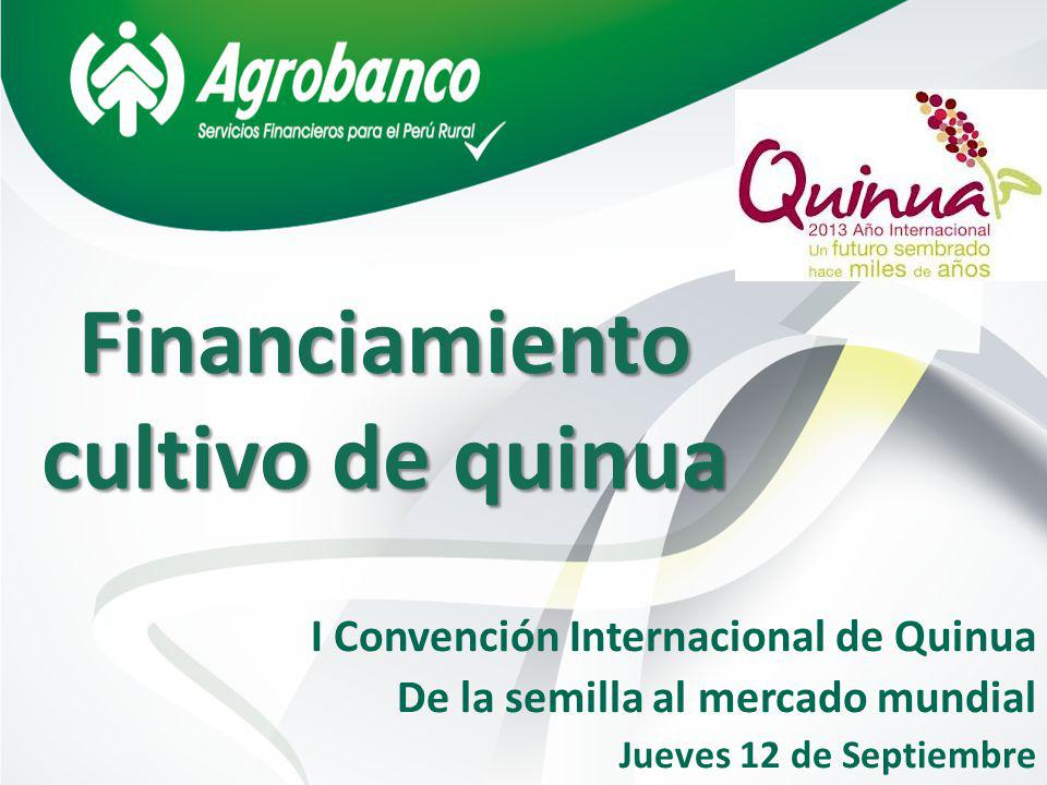 Financiamiento cultivo de quinua