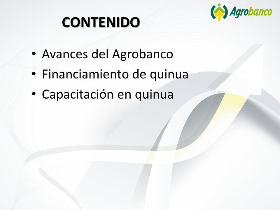 CONTENIDO Avances del Agrobanco Financiamiento de quinua